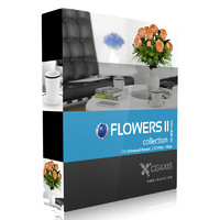 CGAxis Models Volume 26 Flowers II C4D