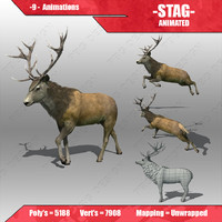 3d model stag animations