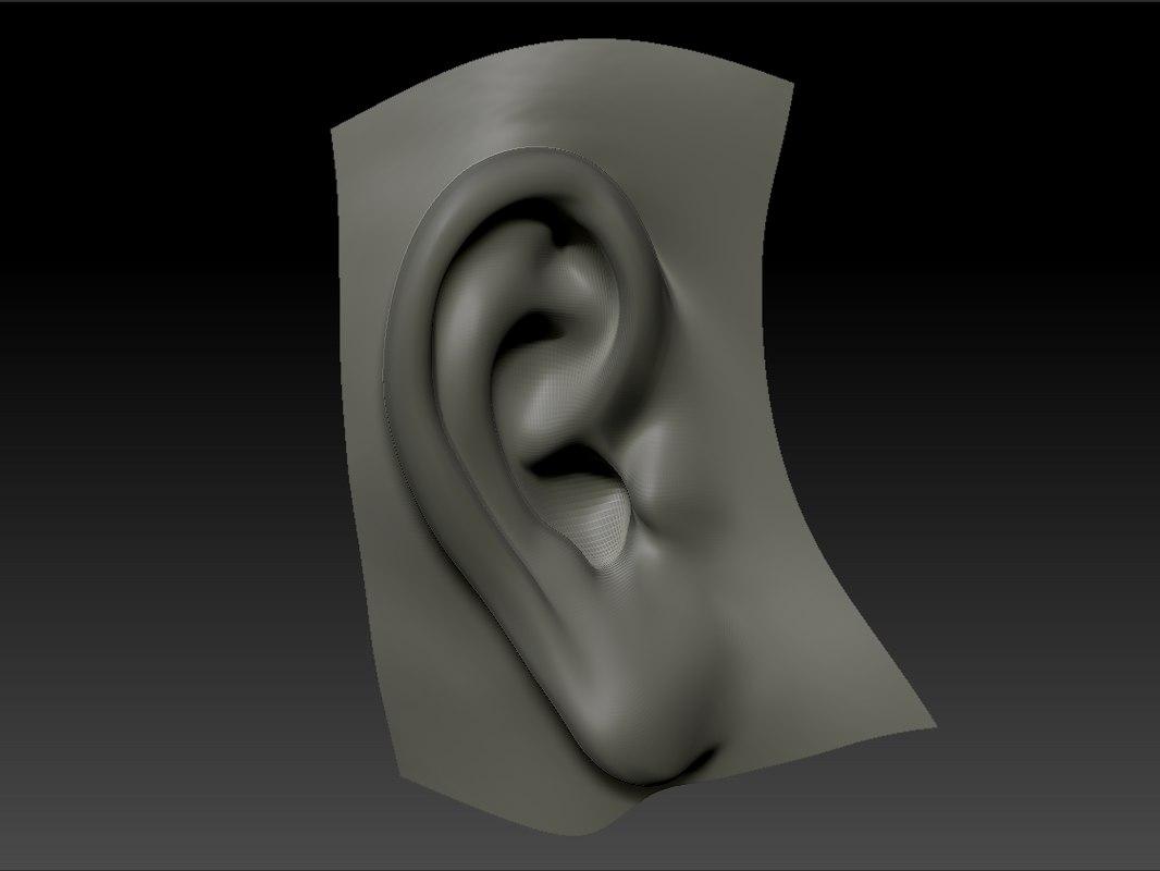Ear_1.BMP