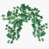 3d model hanging ivy