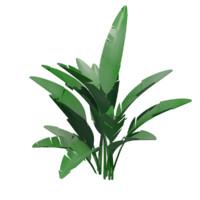 3d bannana plant