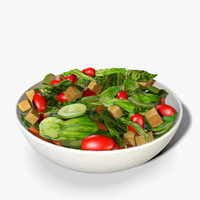 3d obj bowl salad