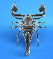 3ds max scorpion