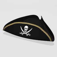 3d pirate hat