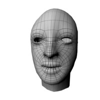 base human male head 3d ma