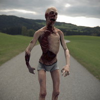 3d model realistic zombie rigged