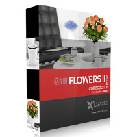 CGAxis Models Volume 26 Flowers II VRay