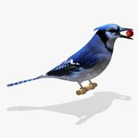 AB Blue Jay SA