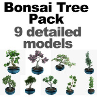 pack bonsai tree 3d model