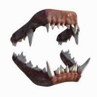 3d bulldog jaw
