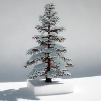 pine tree snow 3d model