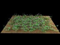 clover trifolium 3d model