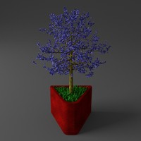 3d young potted jacaranda tree