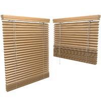 3d blinds model