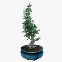 3ds max potted bonsai tree