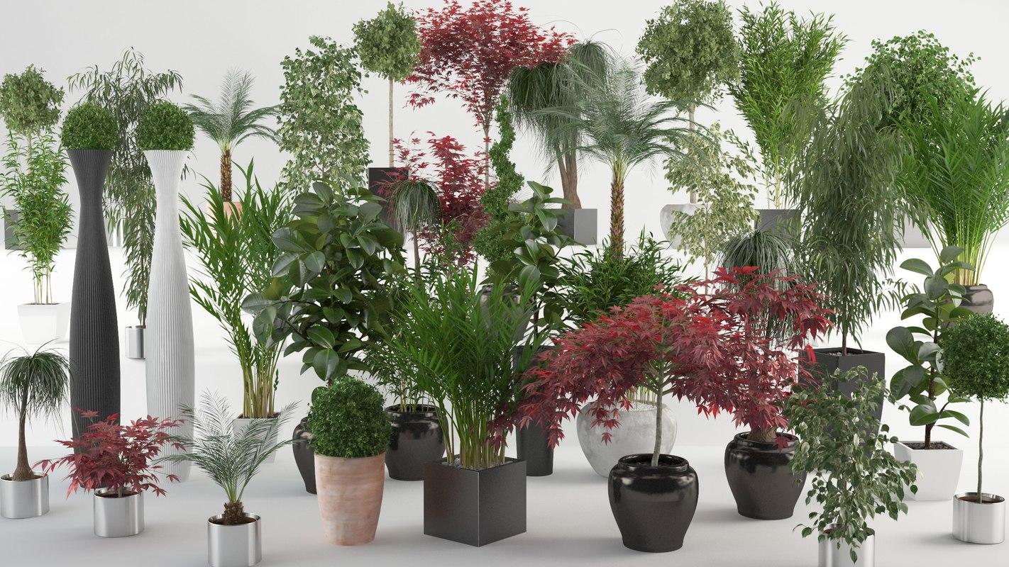 VP Interior Plants all.jpg