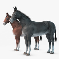 maya donkey realistic