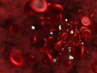 Blood cells lowpoly