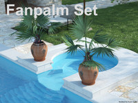 Fan Palm Set