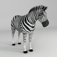 3d realistical zebra rigged horse model