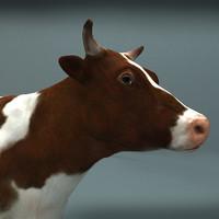 cow 3d c4d