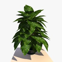 3ds max pothos house plant