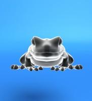 frog lwo