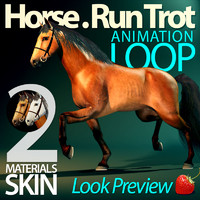 Horse. Trot Animation Loop