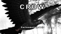 crow animation max