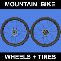 Mountain Bike Wheels + Tires