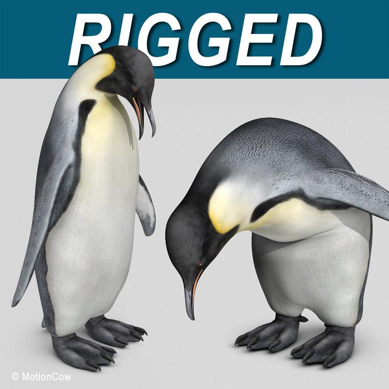 Emperor_Penguin_AAA.jpg