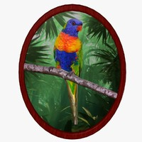 wall lorikeet fg 3ds