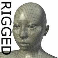 rigged base mesh asian 3d model