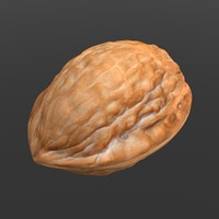 english walnut 3d obj