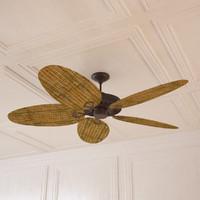 Rattan Ceiling Fan