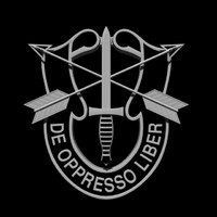 3d special forces insignia