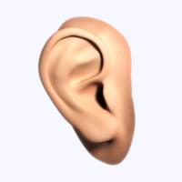 maya human ear