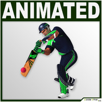 3d helmet cricket bat characters