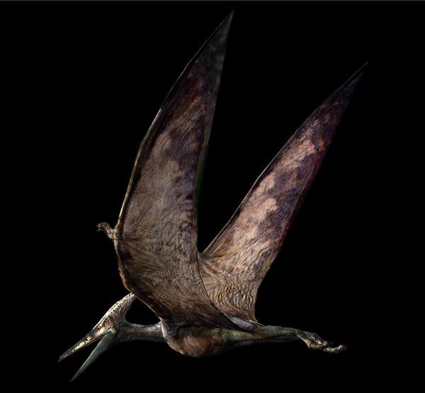 pteranodon jurassic park 3d obj