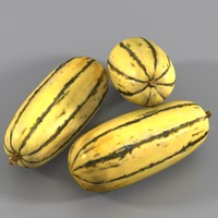 3d 3ds marrow squash