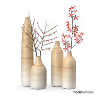 3d set wooden vases