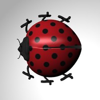 free lady ladybird 3d model