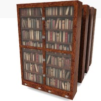 Wood Old Luxurious Bookcase
