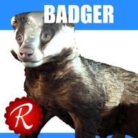 3d badger model