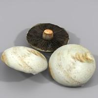 flat mushroom max