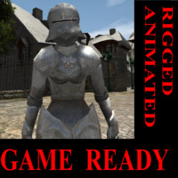 rigged woman knight x
