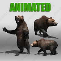 grizzly bear animations 3d model