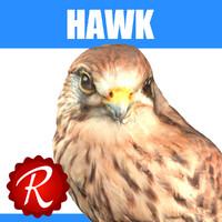 hawk 3d max