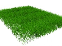 grass 3ds free