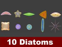 10 diatoms 3d model